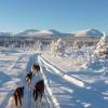 Canada de ultieme wintersportbestemming