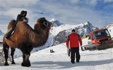 kaukasus-foto-alamy