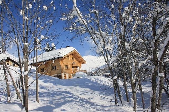 Frankrijk vakantiehuis wintersport 2016